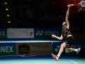 German Open 2014_316